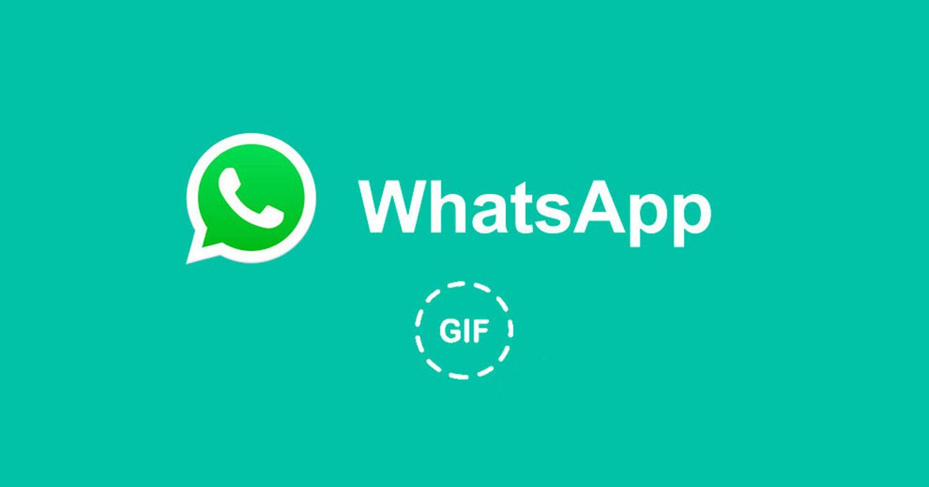 whatsapp-busca-de-gifs