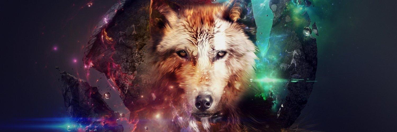 Capa Facebook pets-capa-para-twitter-lobo-galaxia Capas para Twitter