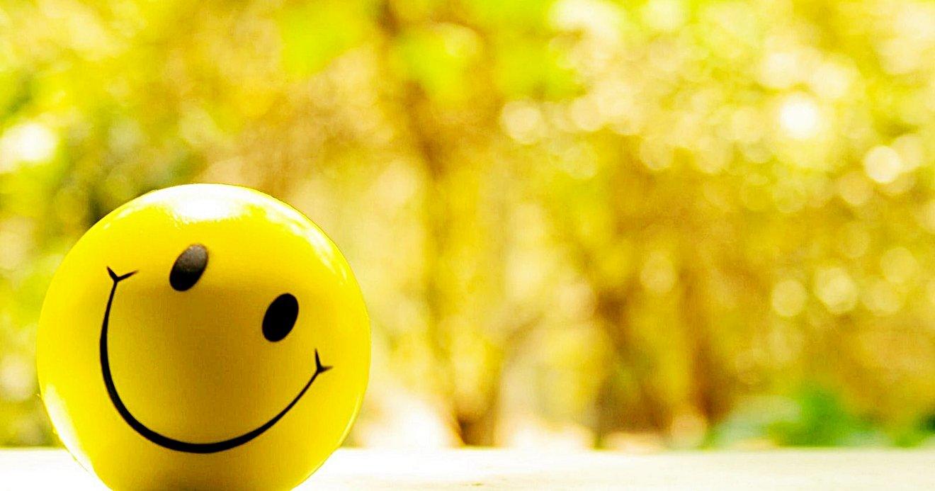 100 Frases Sobre A Vida De Motivação E Positividade Para