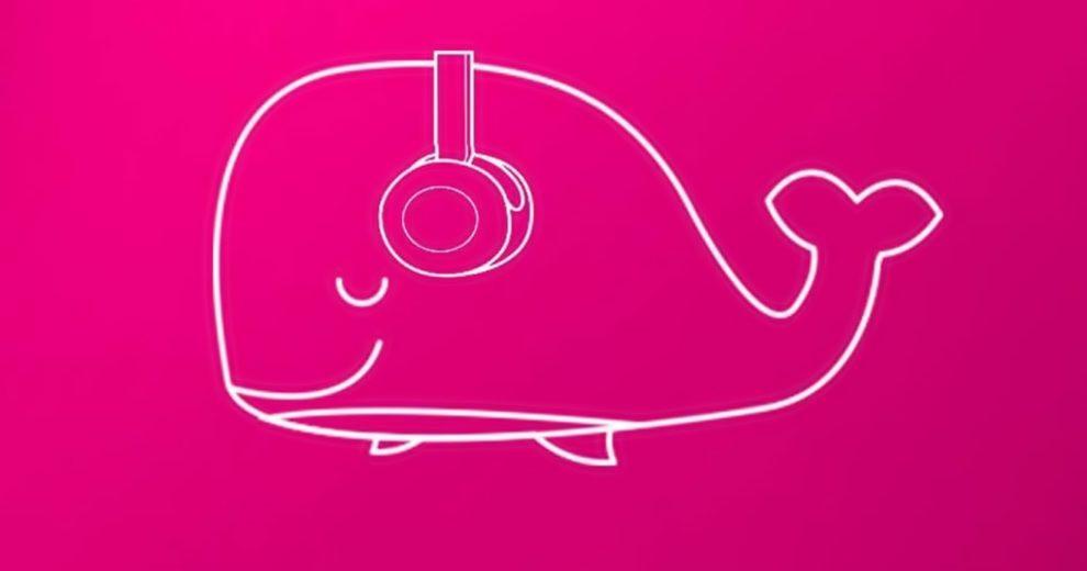desafios da baleia rosa