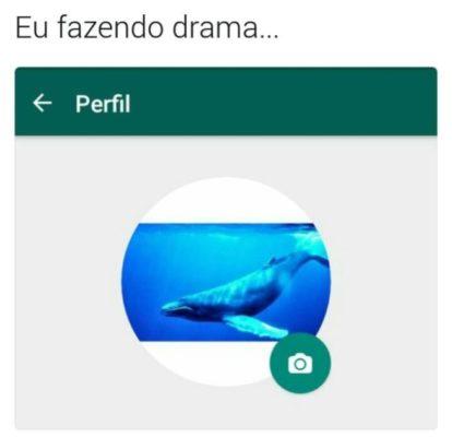 Adolescente brasileiro é vítima do Baleia Azul, o jogo do suicídio