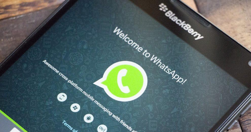 Proteste notifica WhatsApp por suspender serviço em celulares antigos