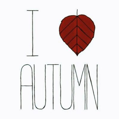 imagens bem vindo outono