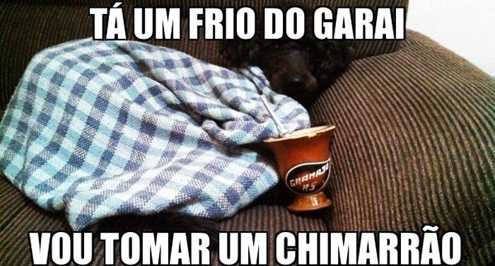 Dia Do Chimarrão
